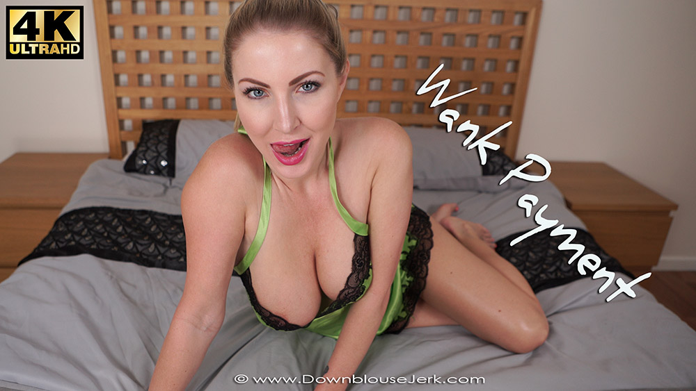 Wank Payment Preview Small